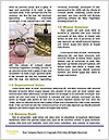 0000078348 Word Templates - Page 4
