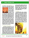 0000078360 Word Templates - Page 3