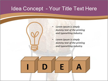 0000078364 PowerPoint Templates - Slide 80