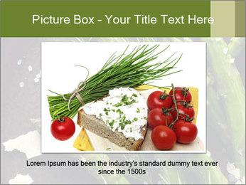 0000078371 PowerPoint Templates - Slide 16