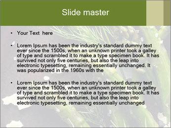 0000078371 PowerPoint Templates - Slide 2