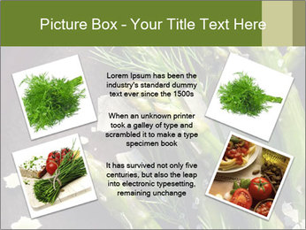 0000078371 PowerPoint Template - Slide 24
