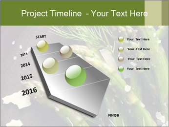 0000078371 PowerPoint Templates - Slide 26