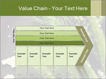 0000078371 PowerPoint Templates - Slide 27