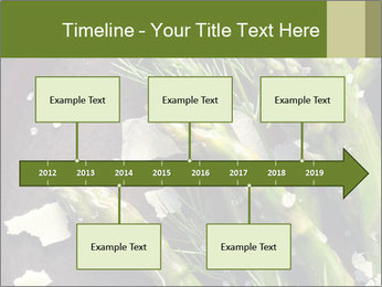 0000078371 PowerPoint Templates - Slide 28