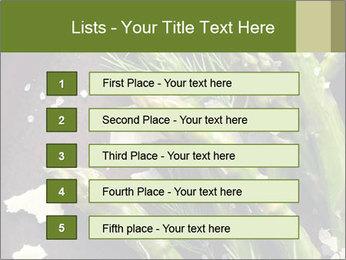 0000078371 PowerPoint Templates - Slide 3