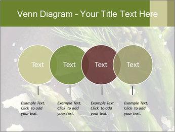 0000078371 PowerPoint Templates - Slide 32