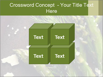 0000078371 PowerPoint Templates - Slide 39