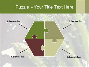 0000078371 PowerPoint Templates - Slide 40