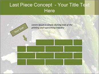 0000078371 PowerPoint Templates - Slide 46