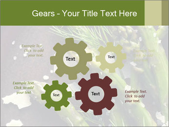 0000078371 PowerPoint Templates - Slide 47