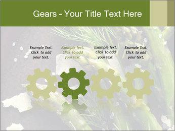0000078371 PowerPoint Templates - Slide 48