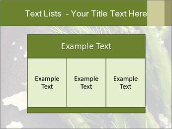 0000078371 PowerPoint Templates - Slide 59