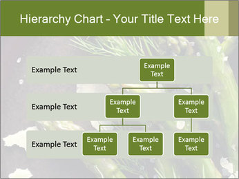 0000078371 PowerPoint Templates - Slide 67