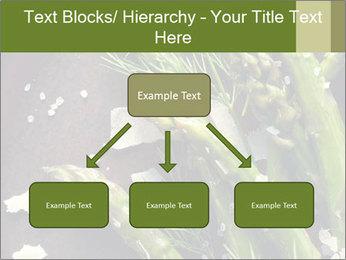 0000078371 PowerPoint Templates - Slide 69