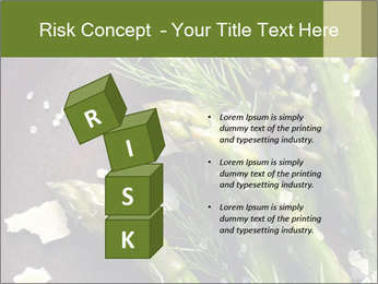 0000078371 PowerPoint Templates - Slide 81