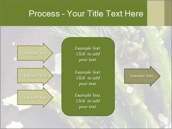 0000078371 PowerPoint Templates - Slide 85