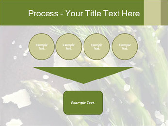 0000078371 PowerPoint Templates - Slide 93