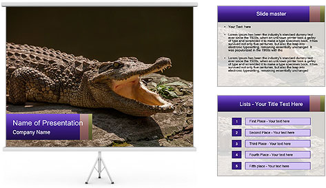 0000078372 PowerPoint Template