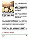 0000078373 Word Templates - Page 4