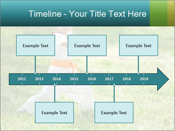 0000078375 PowerPoint Templates - Slide 28