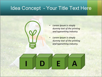 0000078375 PowerPoint Templates - Slide 80