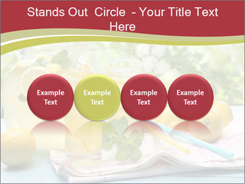 0000078377 PowerPoint Template - Slide 76