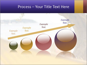 0000078378 PowerPoint Templates - Slide 87