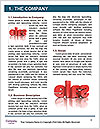 0000078381 Word Template - Page 3