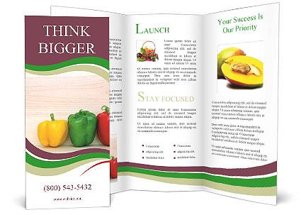 0000078384 Brochure Template