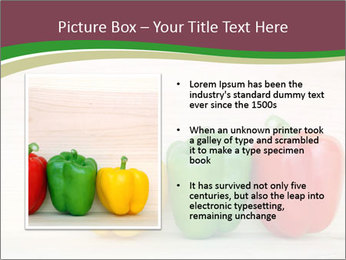 0000078384 PowerPoint Templates - Slide 13