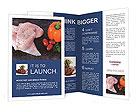 0000078402 Brochure Templates