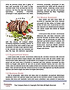 0000078402 Word Templates - Page 4