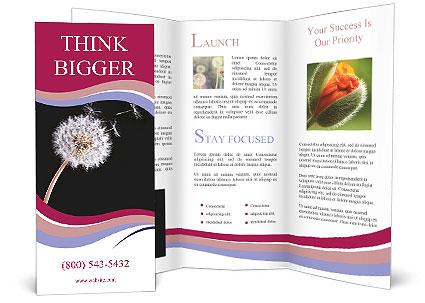 0000078404 Brochure Template