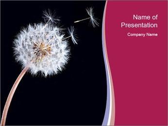 0000078404 PowerPoint Template - Slide 1