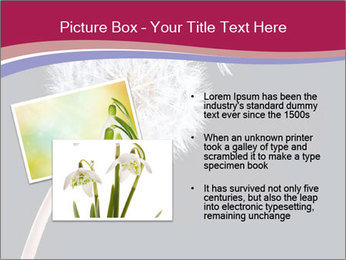 0000078404 PowerPoint Template - Slide 20