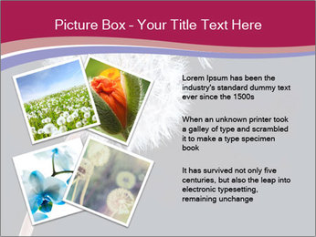 0000078404 PowerPoint Template - Slide 23