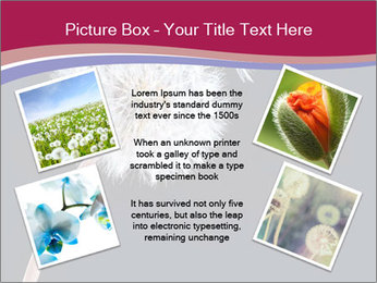 0000078404 PowerPoint Template - Slide 24