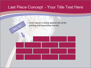 0000078404 PowerPoint Template - Slide 46