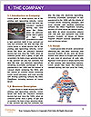 0000078408 Word Template - Page 3