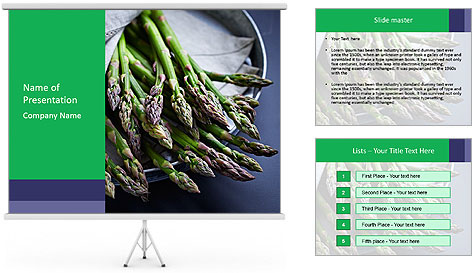 0000078410 PowerPoint Template