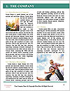 0000078412 Word Template - Page 3