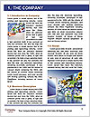 0000078415 Word Template - Page 3