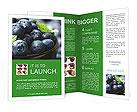 0000078416 Brochure Templates