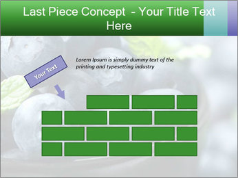 0000078416 PowerPoint Template - Slide 46