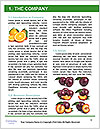 0000078416 Word Templates - Page 3