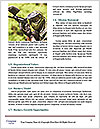 0000078418 Word Templates - Page 4