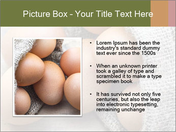 0000078419 PowerPoint Templates - Slide 13