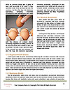 0000078419 Word Templates - Page 4