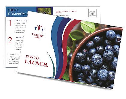 0000078431 Postcard Template